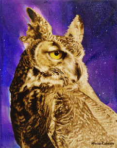 13-Owl-Final.jpg