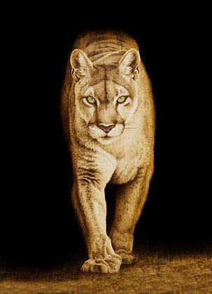 Mt. Lion- Print