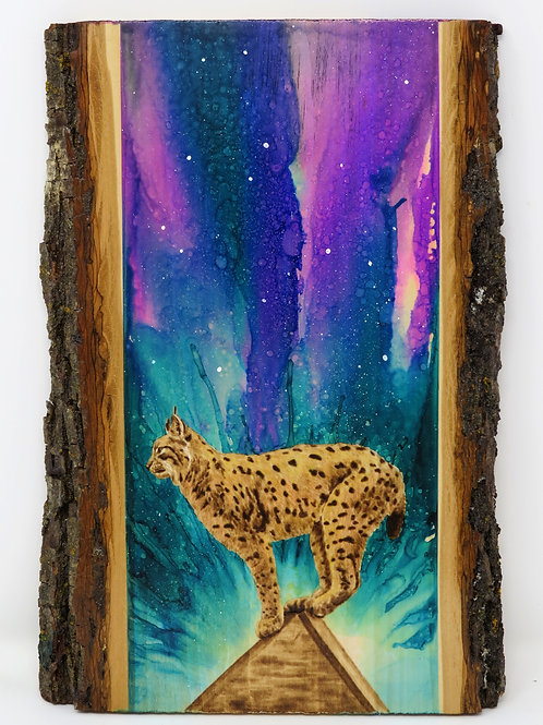 Bobcat of the Night