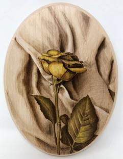 Rose on Fabric.jpg