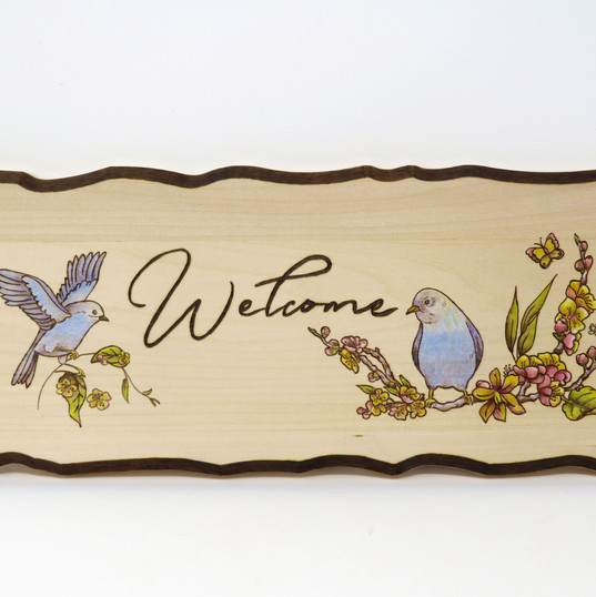 Welcome sign- with color and border.jpg