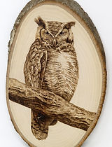 Owl on branch.jpg