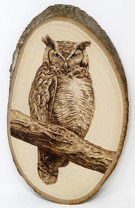 Owl on Branch Wood burning Tutorial