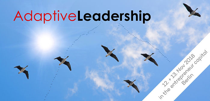 adaptive_leadership_header_image_campton