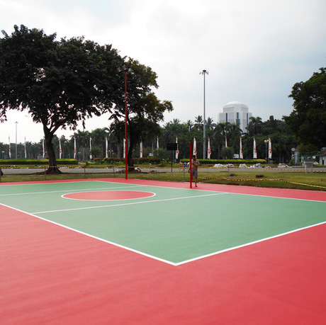 Volley Court Projrcts