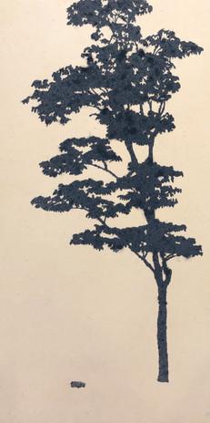 Comtrace_bluish tree-(01)__2020_60x30cm_
