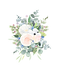 Thistle and Rose_Bouquet3.png