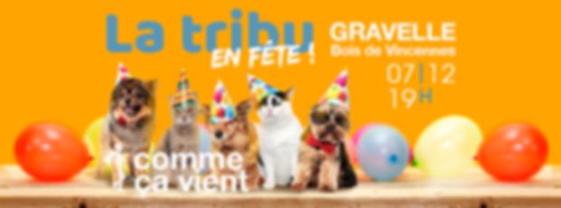 fete_comme_ca_vient.png