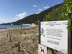 site natura 2000.jpg