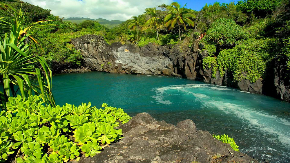 voyage-hawaii-visite-15.jpg