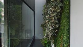 10. Parede Verde da Sala de Reunião 1