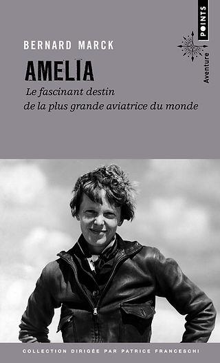 """couverture du livre """"amelia"""""""