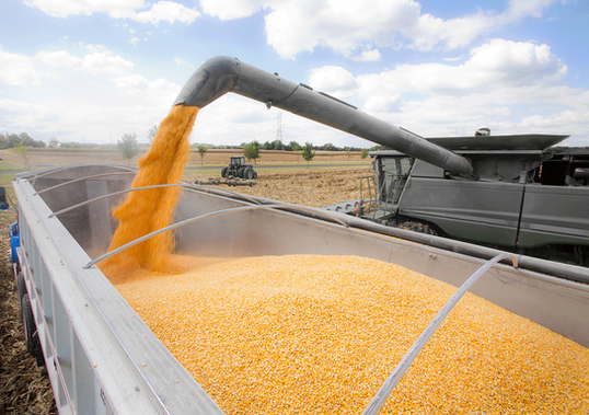 Harvest-2-GettyImages-465467033.png