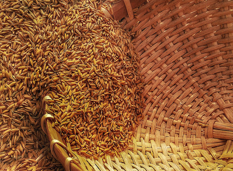 Healthier Grain Processing