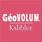 Géovolum logo.jpg