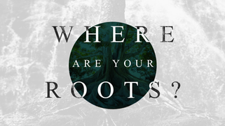 Where Are Your Roots?