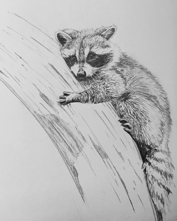 Pencil & Paper (2014)