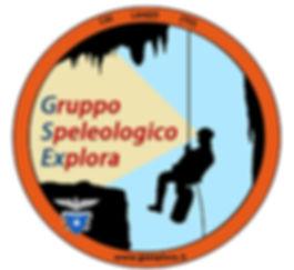logo GSEX.jpg