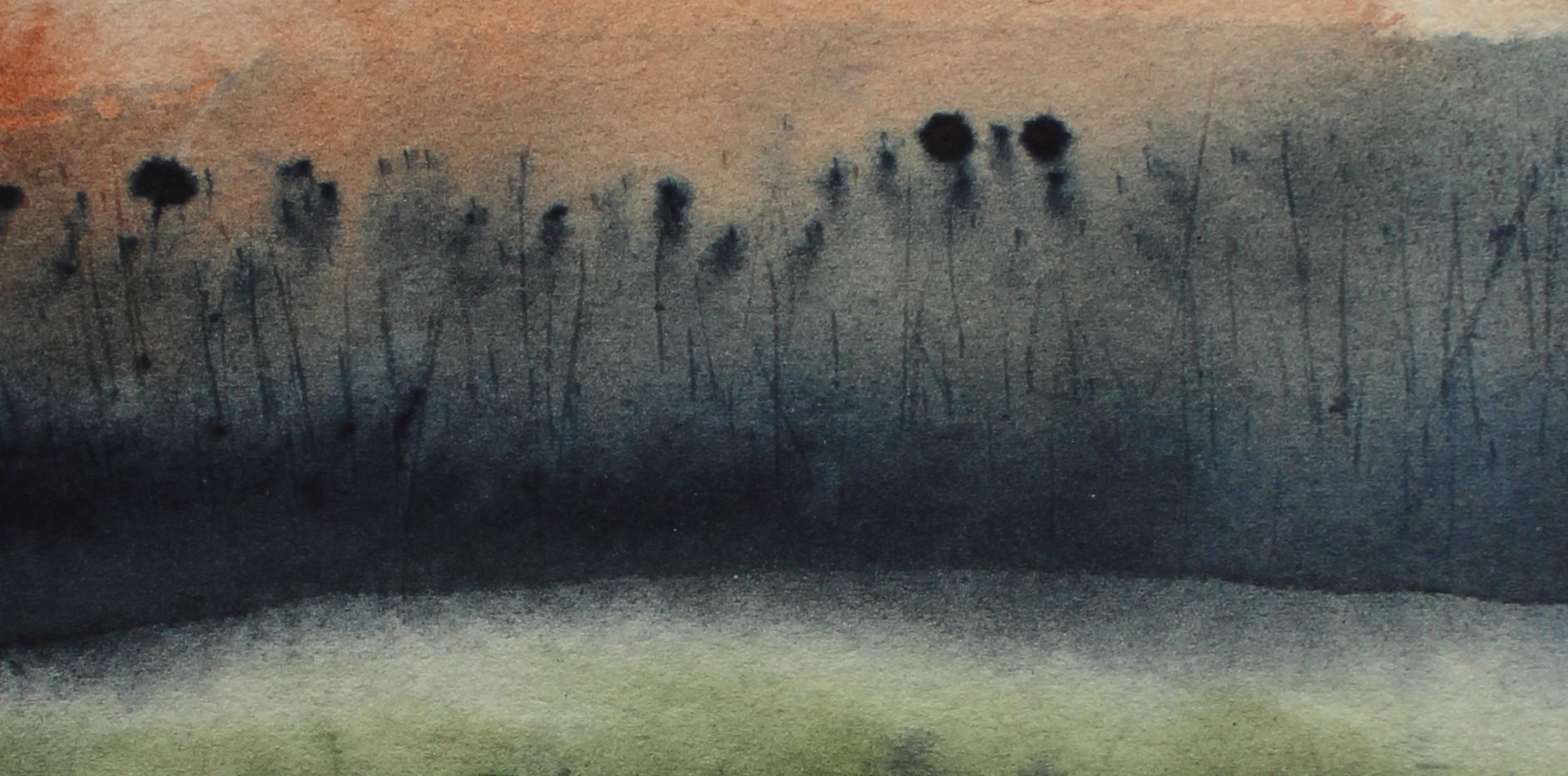Teasels in Morning, Strangford, Jude Fenton