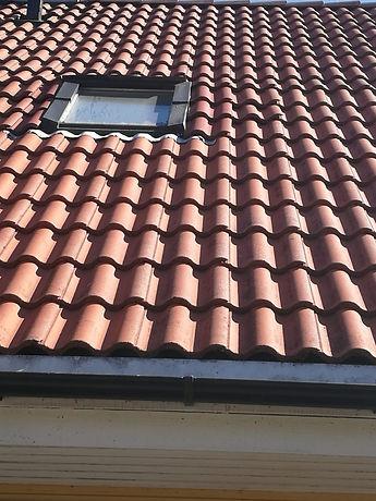 puhdas katto.jpg