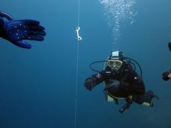 PPB Diver