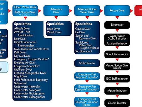 Структура обучения PADI