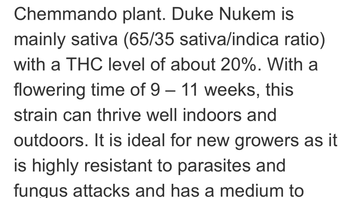 Duke Nukem 65% Sativa Dominant