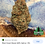 Thumbnail: West coast sour diesel sativa %95 $5