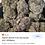Thumbnail:    Sophia's breath 70% sativa 30% Indica $99