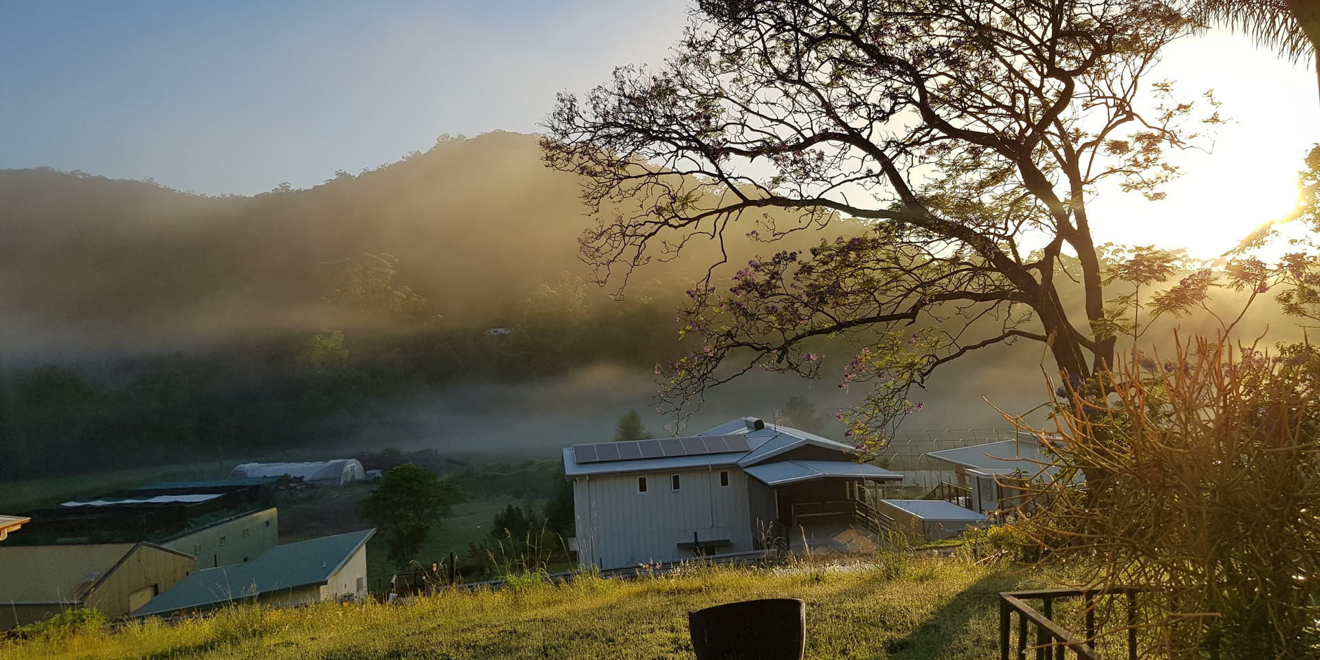 Morning mists from the verandah