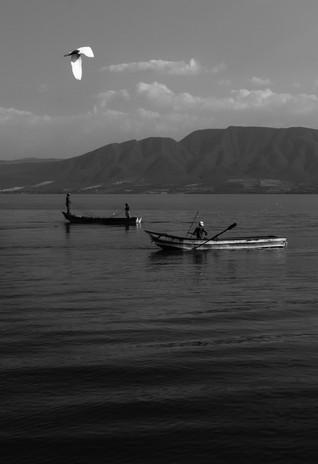 Tarde de Pesca en Chapala y Ave