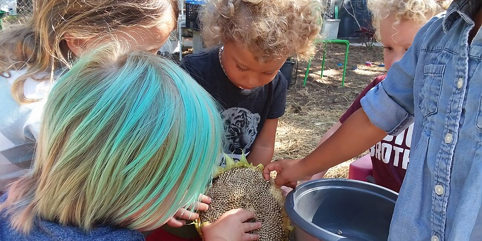 Nature Immersion (3-5 year olds) Summer Week 7