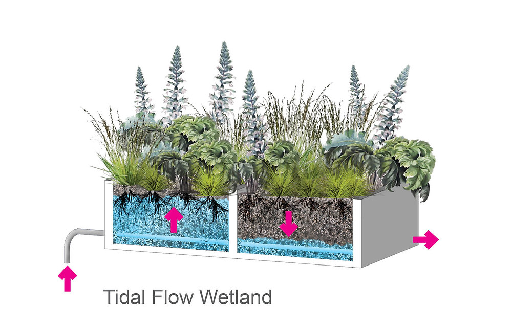 Living Machine Tidal Flow Diagram