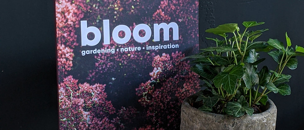 Bloom Magazine plant specialist book. Available for delivery. Plant care tips Bristol. Plant beginners set.