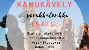 Kamukävely, porukkalenkki koirille lauantaina 30.10. klo 11