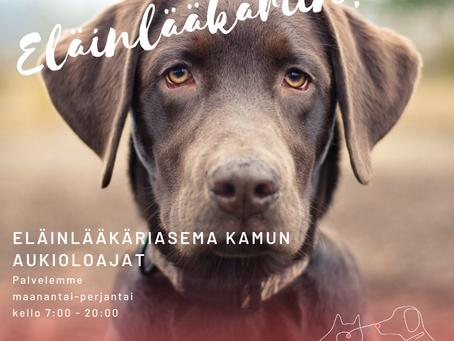 Uusi eläinlääkäri Essi Heikkinen Kamuun
