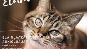 Toimintaohjeet eläinlääkäriin saapumiseen korona-aikana - päivitetty 14.10.2021
