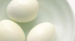 egg23.jpg