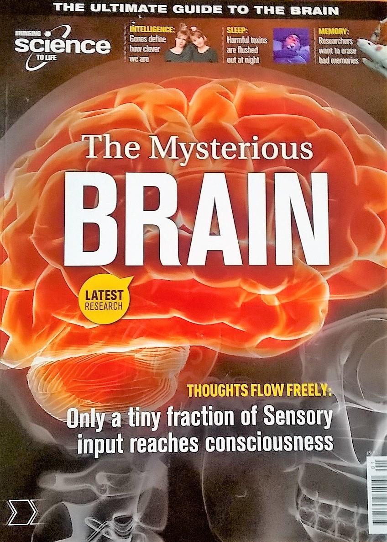 The Mysterious Brain