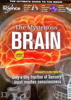 The Mysterious Brain