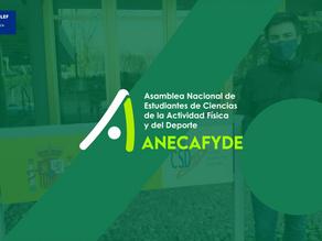 Consejo COLEF y Anecafyde trabajan en una postura común sobre #RegulaciónProfesionalYA