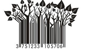The critical nature of the merchandise strategy