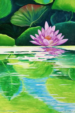 Lotus in a mirror