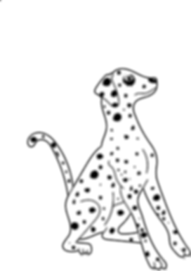 dalmatian.png