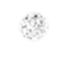 dalmatian circle copy.png