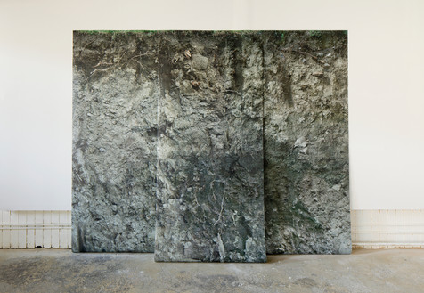 Landscape.  Toner photographs printed on Tyvek. Total size 9' x 8' (separated in 3 panels), 2011  Installation at Unit/Pitt Projects, Vancouver, BC, 2011.  Image credit: Blaine Campbell