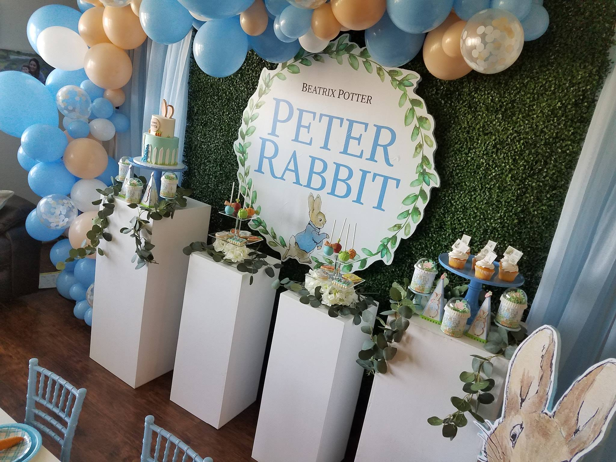 peter rabbit 7