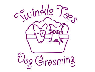 Twinkle Toes Company Logo_3.jpg
