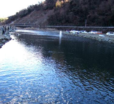 Fishing Field 中津川