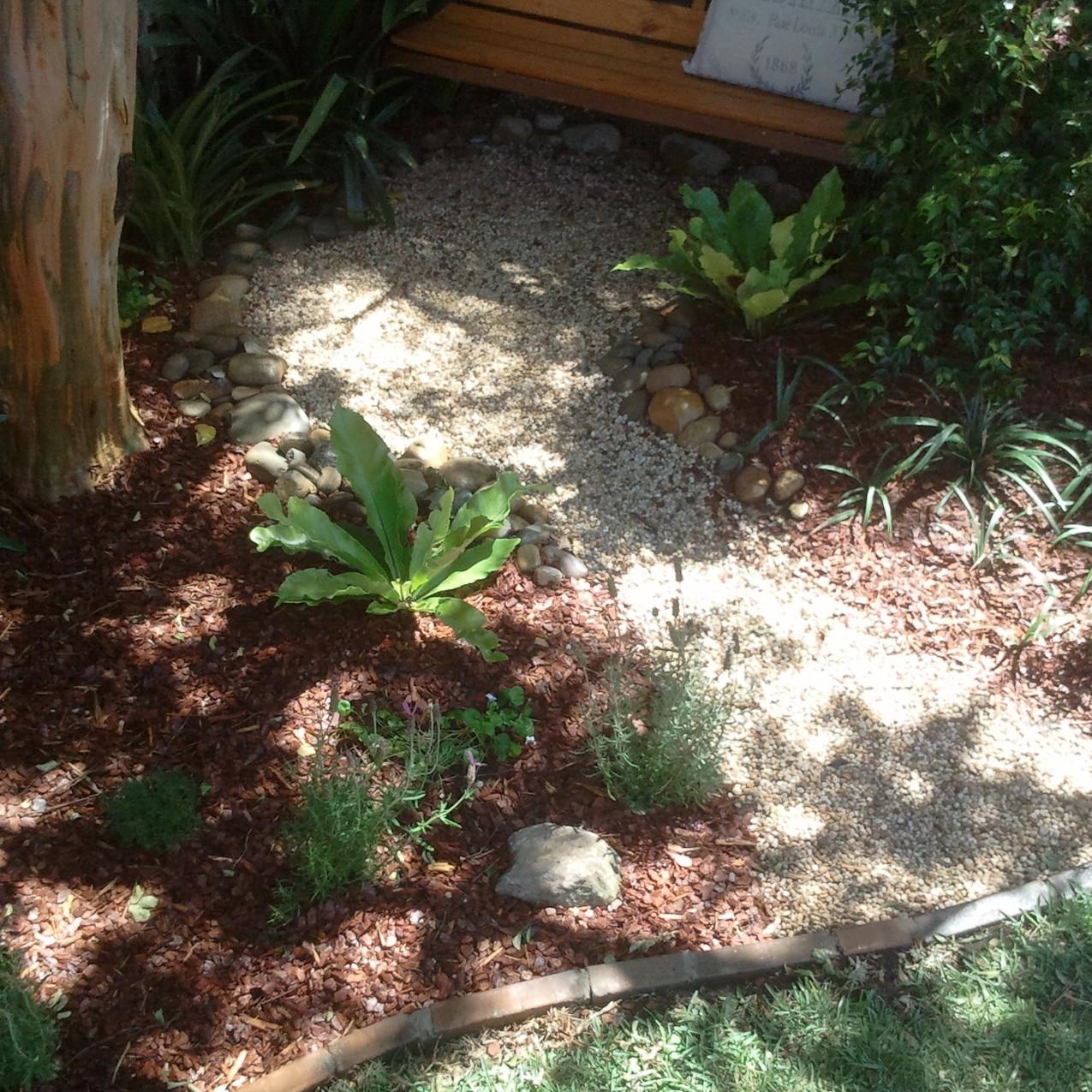 Rodd Point plants